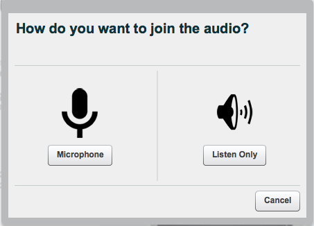 How do you want to join the audio? Microphone or listen only