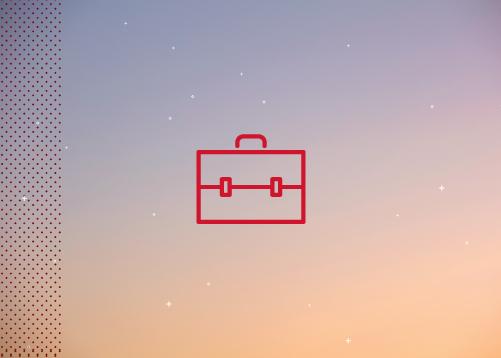 icon of portfolio case