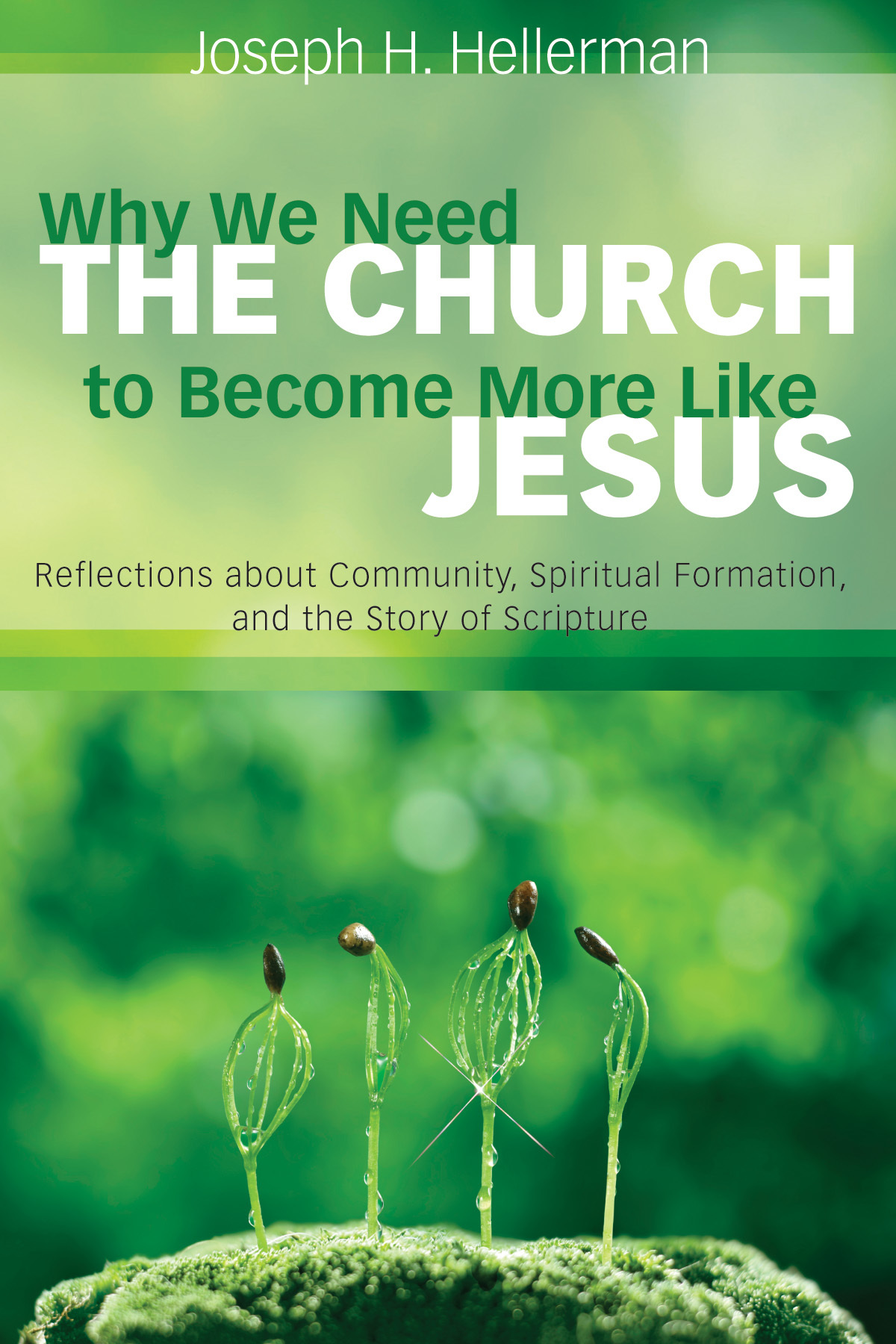 Book Cover: Why We Need the Church to Become More Like Jesus