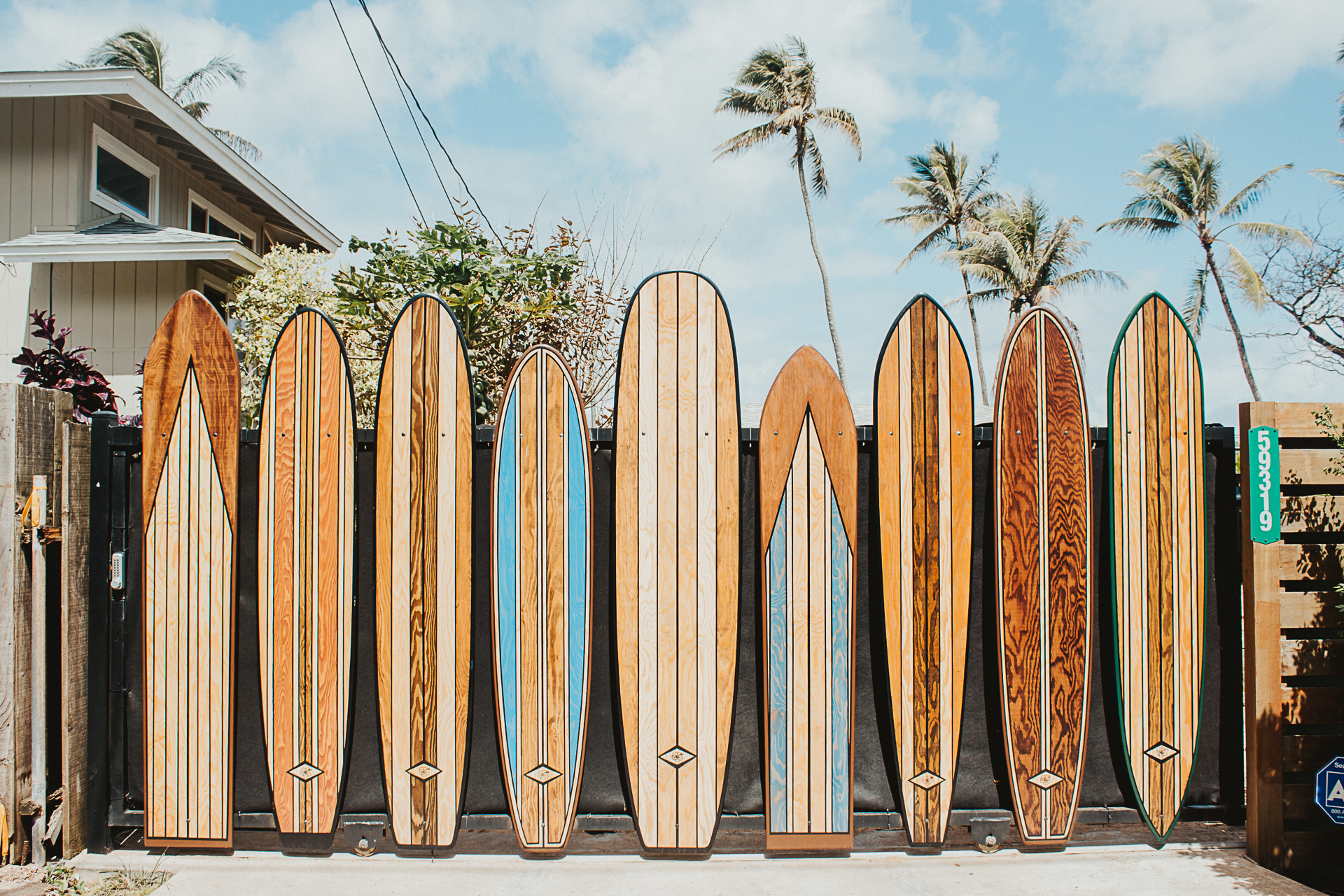 Surfboards in the Sun