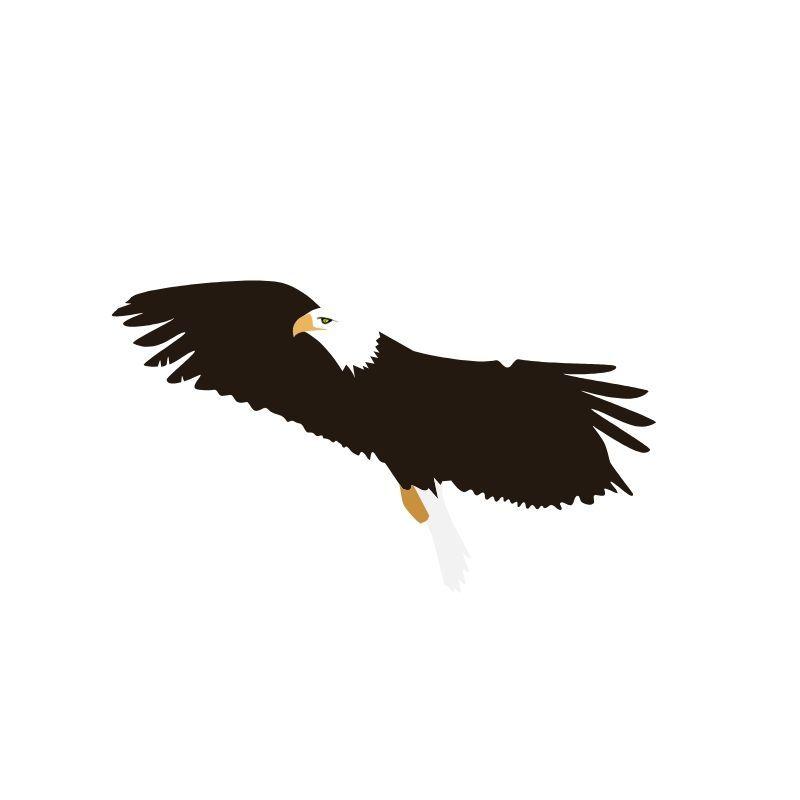 Biola Eagle, Flying High