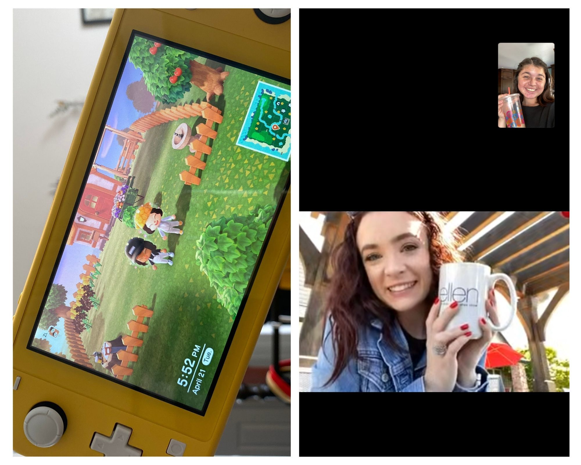 Animal Crossing meet-ups and FaceTime chats