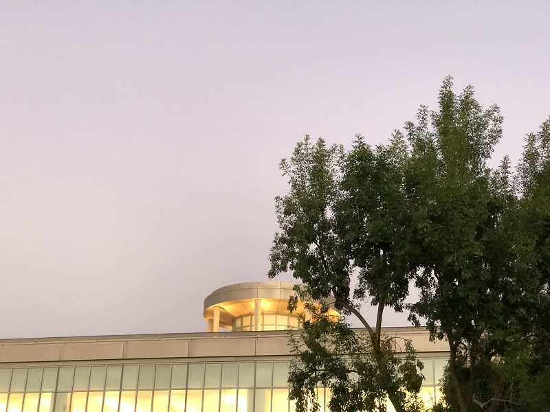 Biola's library building half hidden by a tree, in the evening sunset glow of La Mirada. The sky is a pinky-purple.