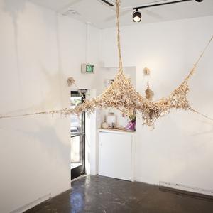 Amanda Evans (4) B.F.A./Sculpture